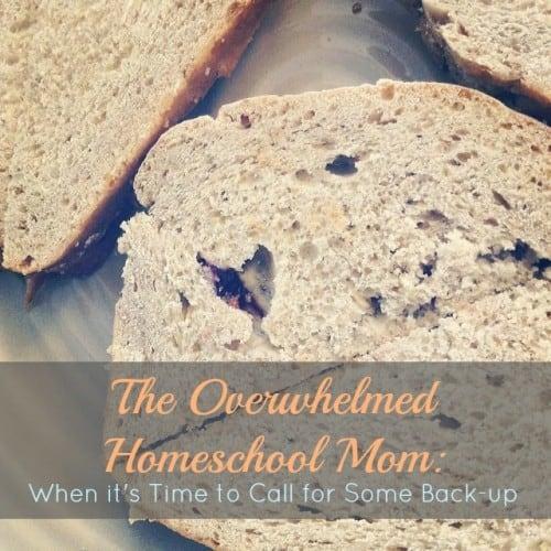 The Overwhelmed Homeschool Mom