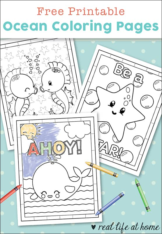 This super cute set of free printable ocean coloring pages are sure to delight whether it's for an ocean animal unit study or just for fun