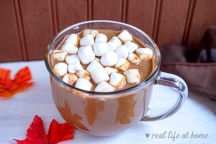 homemade pumpkin hot chocolate recipe