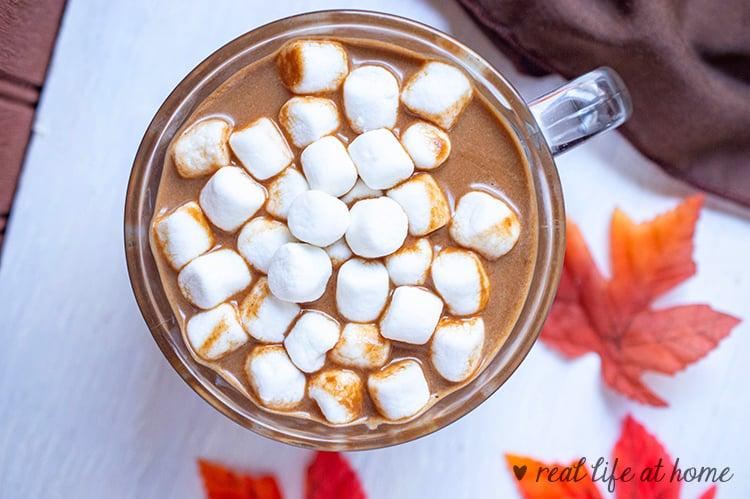 Homemade coconut pumpkin hot chocolate