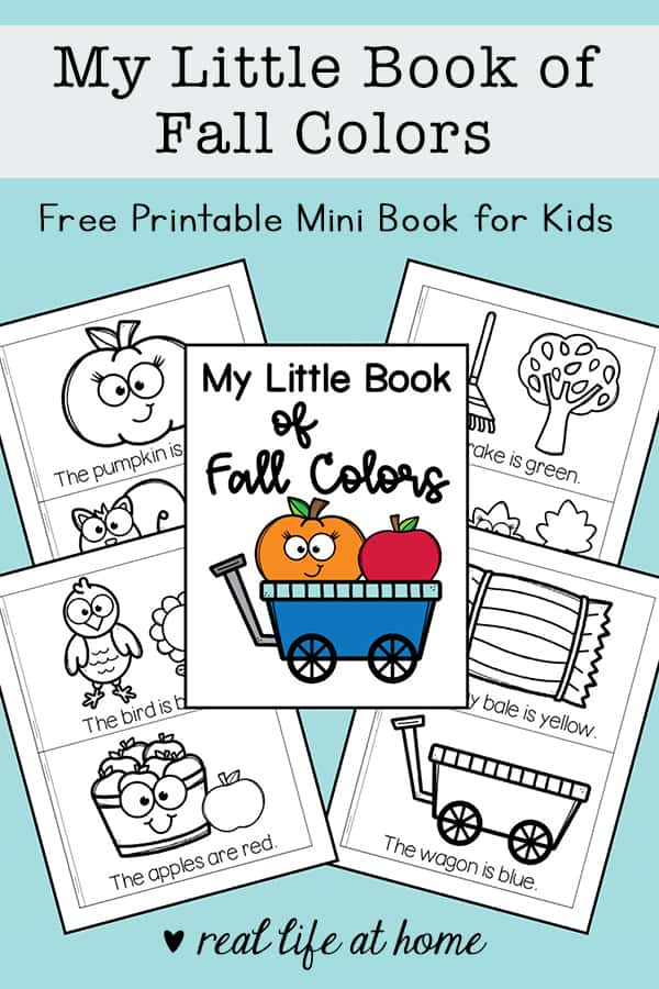 Work on reading, color recognition, and following directions with this free mini book made especially for fall. Kids will color pictures based on the words in this fall colors mini book.
