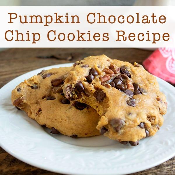 Pumpkin Chocolate Chip Cookies Recipe (with Pecans)