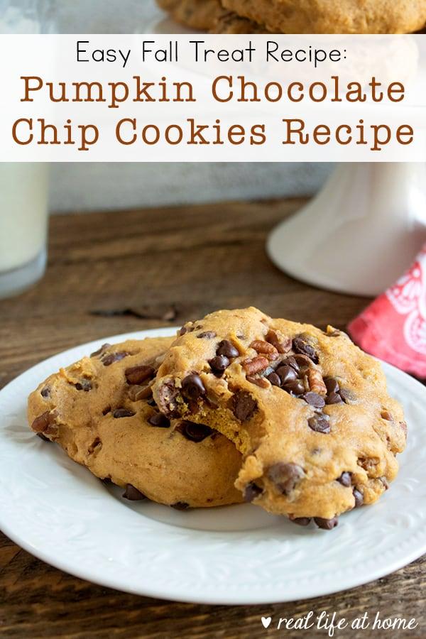 Pumpkin Chocolate Chip Cookies with Pecans Recipe