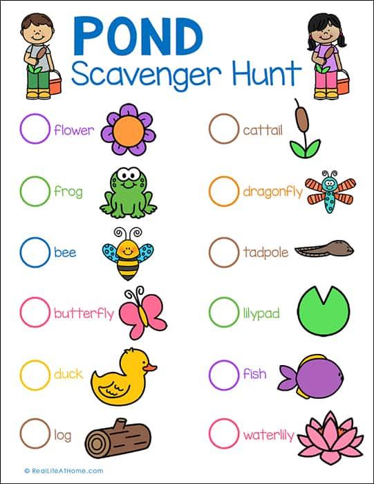 Pond Scavenger Hunt Printable