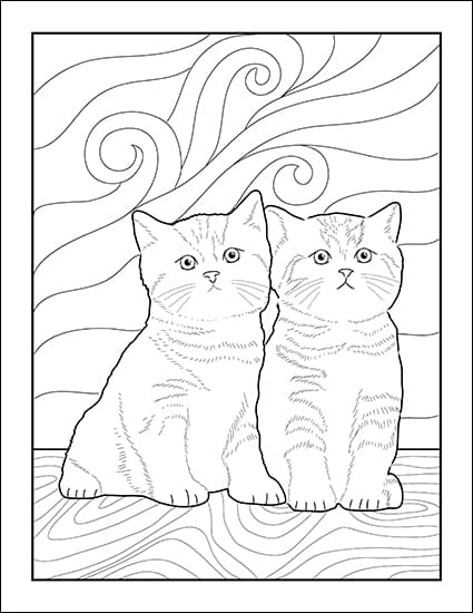 Free Printable Cat Coloring Page from Real Life at Home