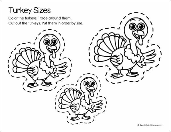 Turkey Size Fine Motor Skills Practice Sheet
