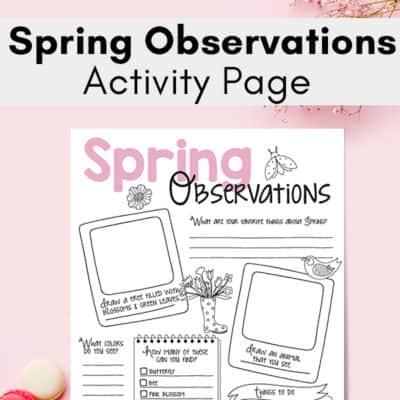 Spring Nature Study Printable